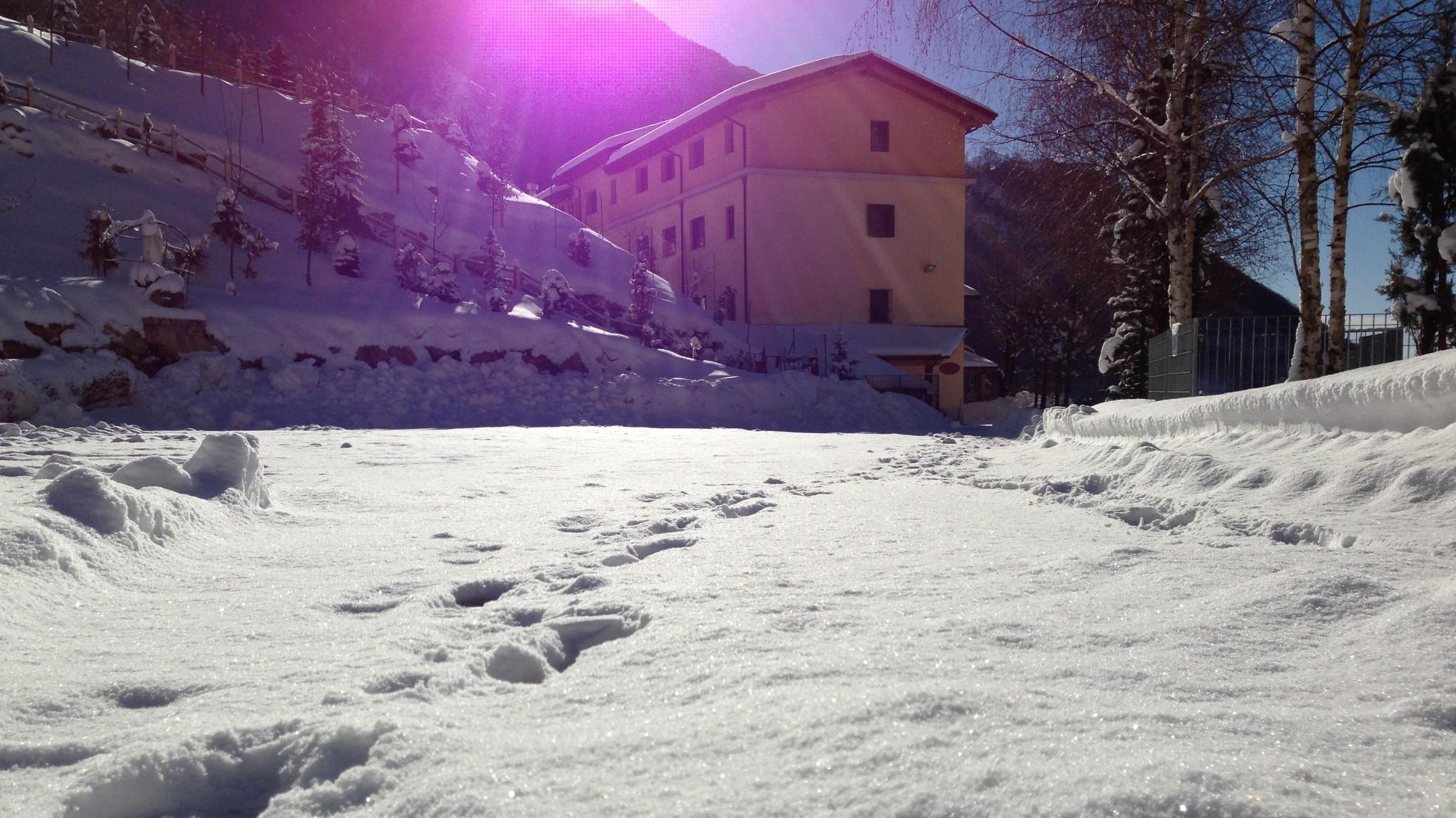 campi invernali